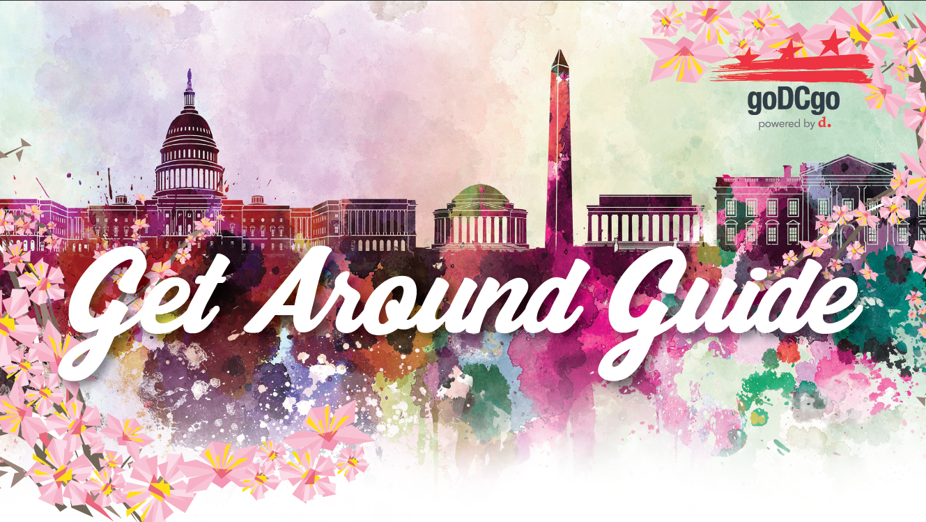 Staying at A Cherry Blossom Hotel? Download Your Get Around Guide